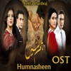 Humnasheen From Humnasheen Single