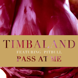 Timbaland - Pass At Me feat. Pitbull