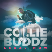 [Download] Legal Now MP3