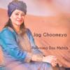 Poornima Das Mehta - Jag Ghoomeya artwork