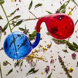 Dirty Projectors – That's A Lifestyle – Pre-Single [iTunes Plus M4A] | iplusall.4fullz.com