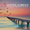 Ayurveda - Natural Ambience: Relaxing Therapy Songs, Yoga Meditation, Spa, Massage, Soothing Sounds for Sleep artwork
