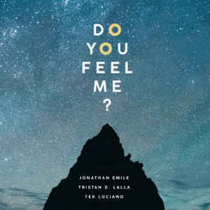 Do You Feel Me? (feat. Tristan D. Lalla & Tek Luciano) - Single Mp3 Download