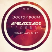 Doctor Boom - What Was That