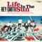 Life In The Sun
