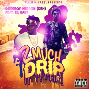 2 Much Drip (feat. Lil Baby) - Single Mp3 Download