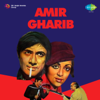 Amir Gharib (Original Motion Picture Soundtrack)
