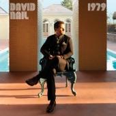 David Nail - Someone Like You