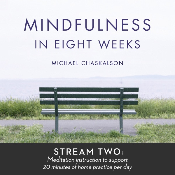 Mindfulness in 8 Weeks: 20 Minutes a Day Program