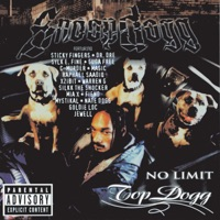 No Limit Top Dogg Mp3 Download