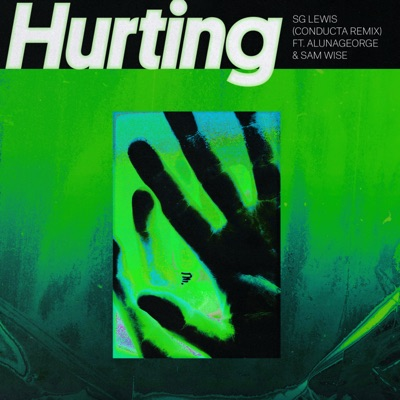 Hurting (feat. AlunaGeorge & Sam Wise) [Conducta Remix] - Single MP3 Download