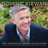 Dominic Kirwan - Noreen Bawn artwork