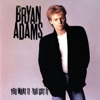 You Want It, You Got It, Bryan Adams