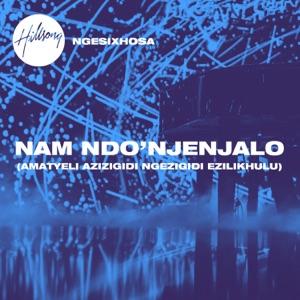 Nam Ndo'njenjalo (Amatyeli Azizigidi Ngezigidi Ezilikhulu) - Single Mp3 Download
