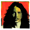 Chris Cornell - You Know My Name (From