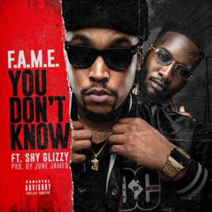 You Don't Know (feat. Shy Glizzy) - Single Mp3 Download