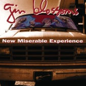 Gin Blossoms - Until I Fall Away