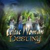 Celtic Woman - Like an Angel Passing Through My Room bild