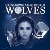Download Video Wolves - Selena Gomez & Marshmello
