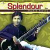 Splendour (Instrumental) - Ustad Shahid Parvez Khan