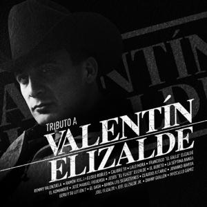 Varios Artistas - Tributo A Valentín Elizalde