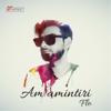 FLO - Am Amintiri artwork