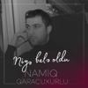 Namiq Qaracuxurlu - Papanın Gül Balası artwork