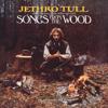 Jethro Tull - Pibroch (Cap in Hand) [Steven Wilson Stereo Remix] artwork