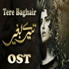 Tere Baghair From Tere Baghair Single