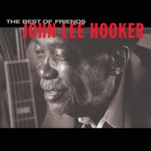 John Lee Hooker & Carlos Santa - The Healer
