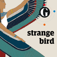 Podcast cover art for Strange Bird
