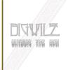 Bigwilz - Coconut Bubling artwork