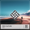 Midi Culture - You (Extended Mix) artwork