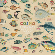 The Much Much How How and I - Cosmo Sheldrake - Cosmo Sheldrake