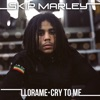 Llora Me Cry to Me Kustom Mike Remixes Single