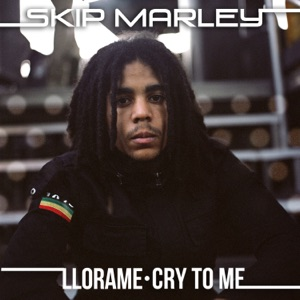 Skip Marley - Cry to Me
