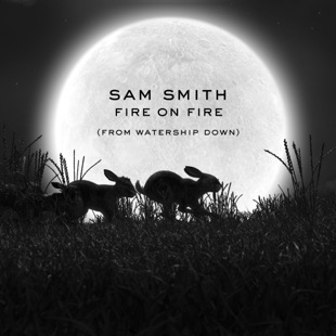 سم اسمیت – Fire on Fire