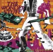 Never Loved Elvis (Remastered)