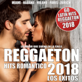 Reggaeton 2018 (Los Exitos)-Various Artists