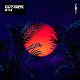Flames Single Par David Guetta Amp Sia Sur Apple Music