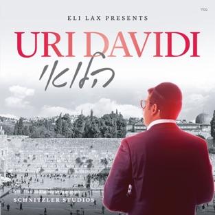 Halevai – Uri Davidi