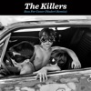 Run for Cover (Naderi Remix) - Single, The Killers