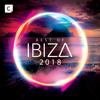Verschillende artiesten - Best of Ibiza 2018 kunstwerk