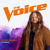 Human (The Voice Performance) - Chris Kroeze