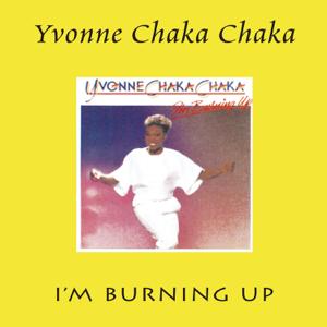 Yvonne Chaka Chaka - Take My Love Its Free