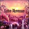 Lotus Blossoms - Derek Fiechter & Brandon Fiechter