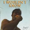 Benjamin Ingrosso - I Wouldn't Know bild