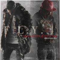 De La Ghetto - F.L.Y (feat. Fetty Wap) artwork