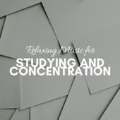 Relaxing Music for Studying and Concentration - School & Uni Exam Preparation