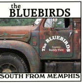 the bluebirds - Cleveland, MS.